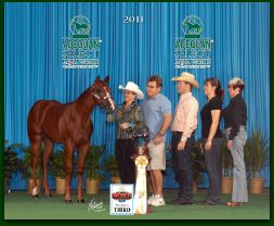 Hell On Heels 2011 AQHA Select World group win2.jpg